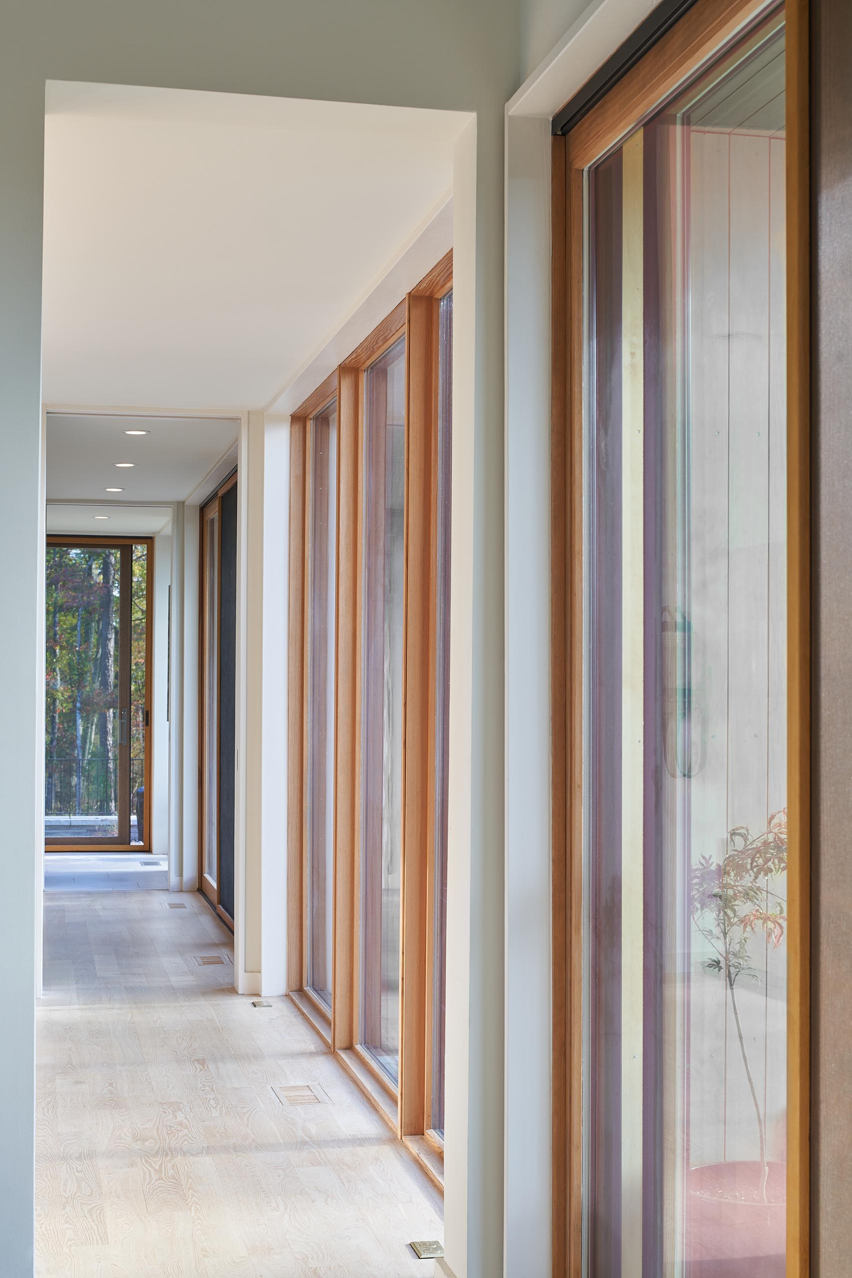 A modern hallway with large floor to ceiling windows that frame views of the trees, and create an abundance of natural light for the hallways.