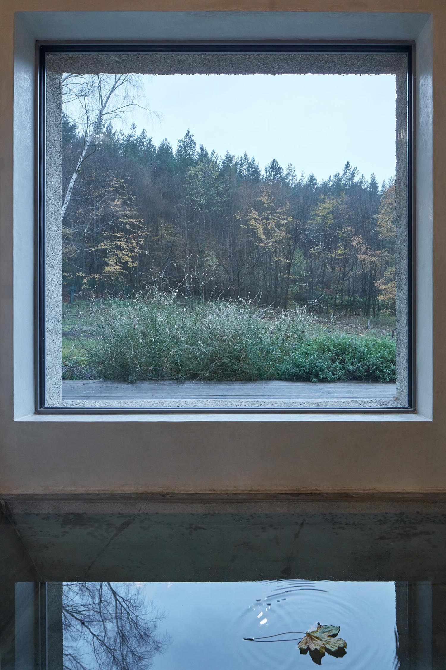 A sunken bathtub lies below a picture window with views of the trees.