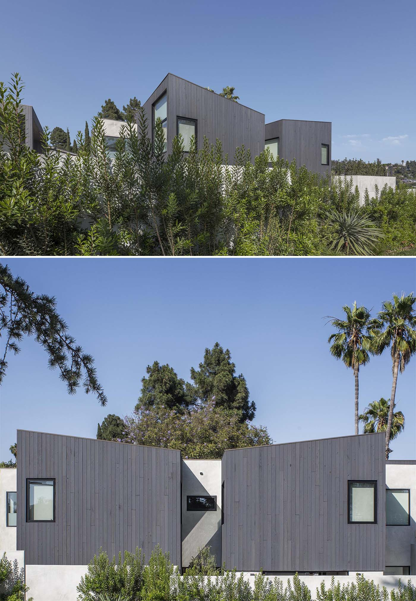 Situated on a highly exposed corner lot, the exterior of this modern home features Shou Sugi Ban charred cypress wood and a smooth exterior plaster.