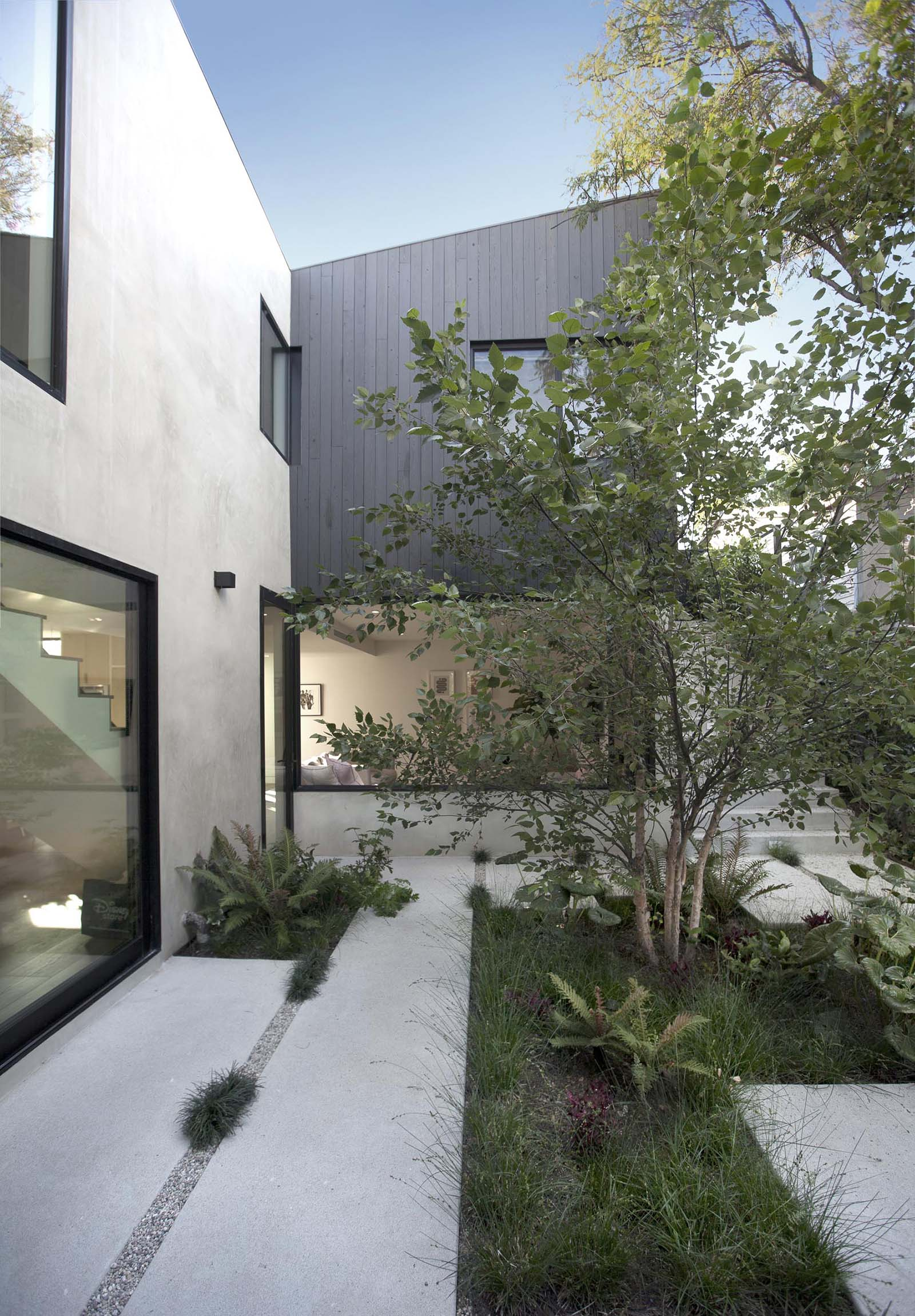 A modern courtyard with concrete pavers, pebbles, grasses, and a large tree.