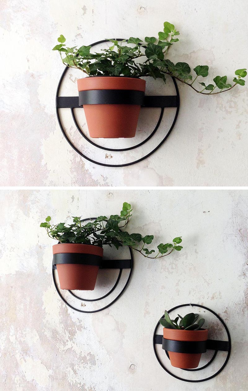 These modern wall planters, which come in a variety of sizes and shapes, have simple yet minimalist designs, that hold a single pot and can display plants like cacti, vines, and succulents. #ModernWallPlanter #WallPlanter #HomeDecor #WallArt