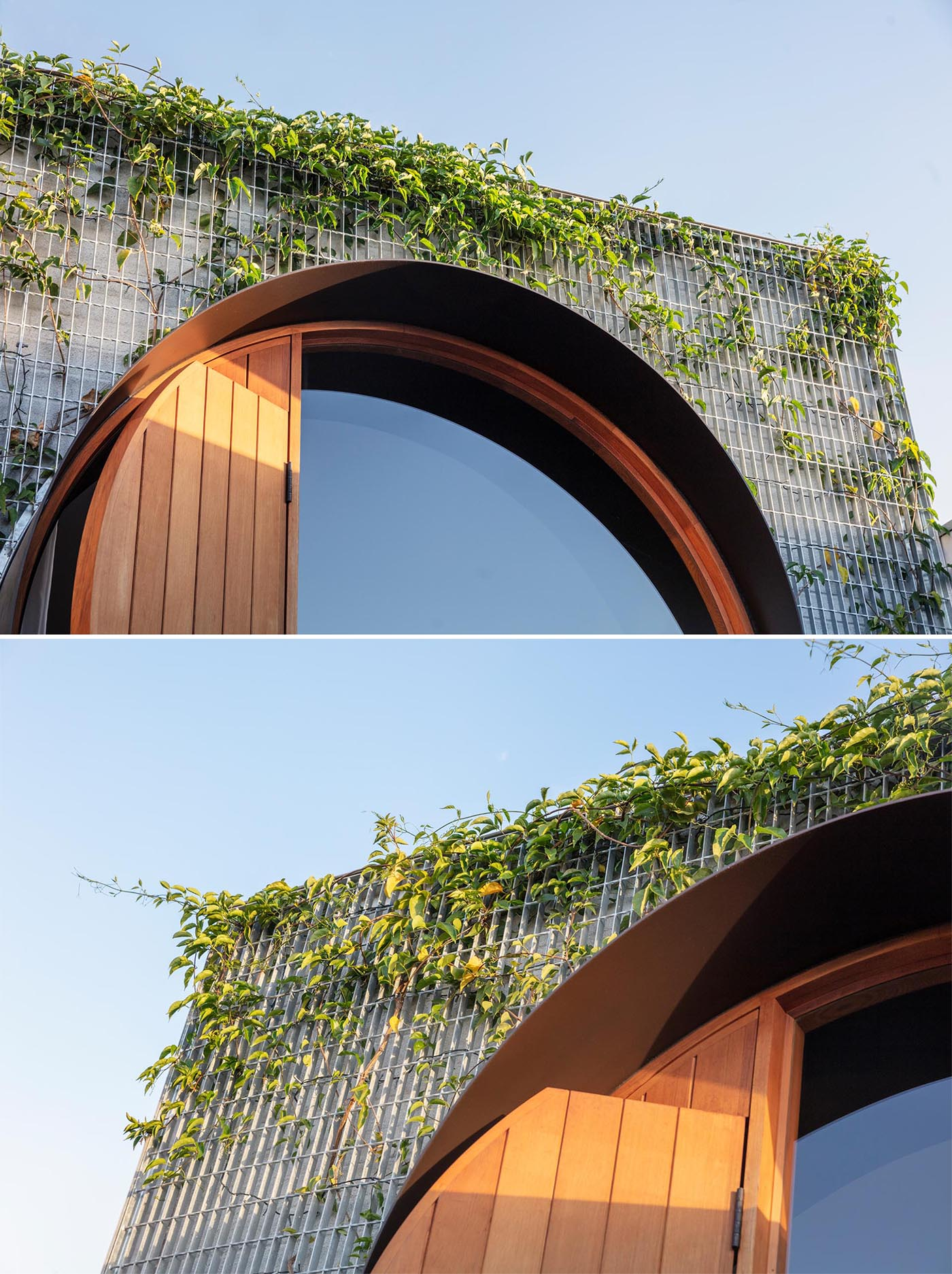 A wall of vines will grow to wrap around this round window.