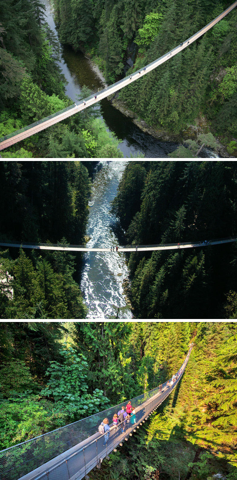 10 Of The Most AMAZING Suspension Bridges In The World // The Capilano suspension bridge in North Vancouver, Canada, is a must see when you're in the city.