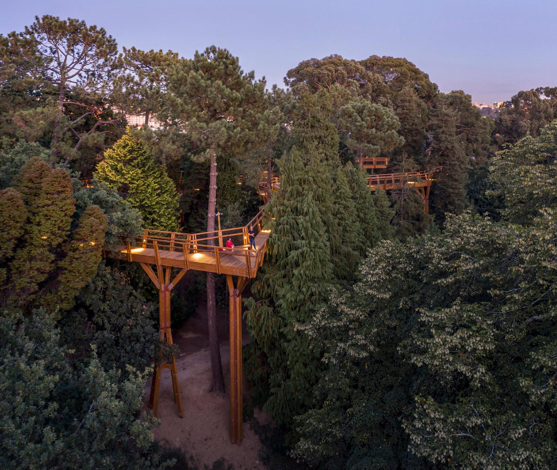 A treetop canopy walk in Portugal.