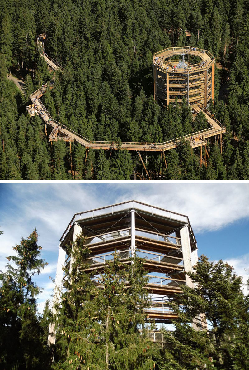11 Tree Top Walks For Lovers Of Nature // Spend the day walking through the trees and test your nerves on rope stations through the Lipno Treetop Walkway in the Czech Republic.