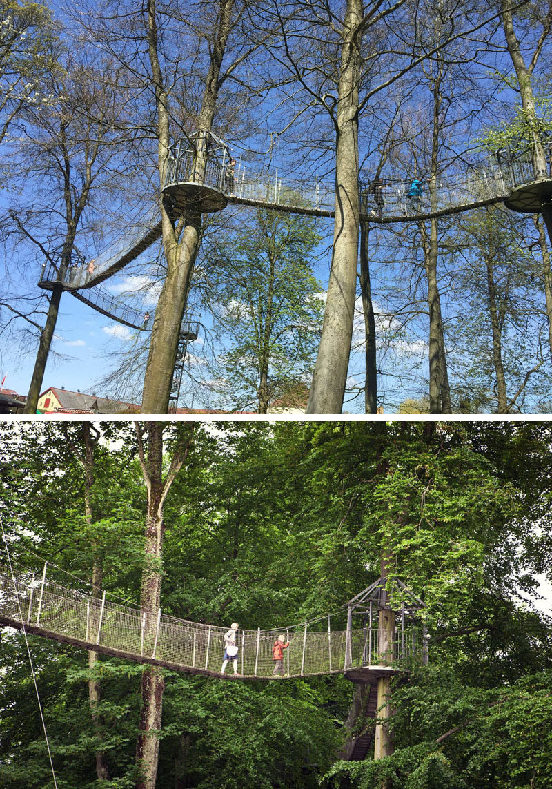 11 Tree Top Walks For Lovers Of Nature // Walk through the tree tops of the 130 year old birch forest at Egeskov Castle in Denmark.